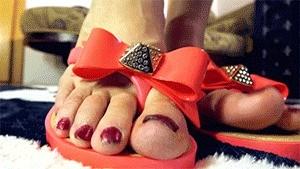 Loryelle's Flip Flops Show