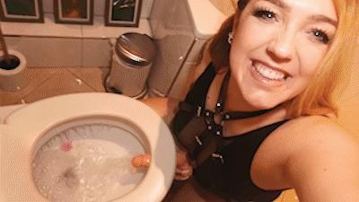 Toilet seat wanker