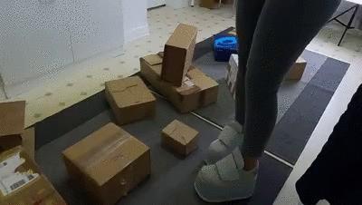 Buffalo plateau trample cardboard