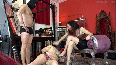 Lady Scarlet - Homosexual blowjob show