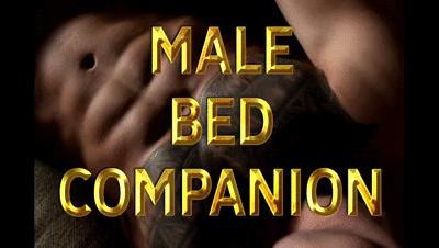 MALE BED COMPANION