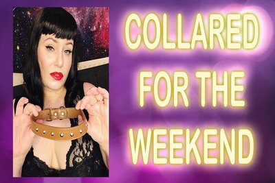 COLLARED FOR THE WEEKEND