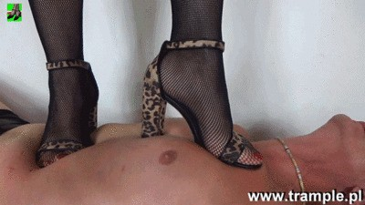 Leopard print sandals WMV