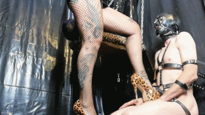 Beta Slave 1/4